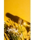 Golden Neroli - Eau de parfum– Abel